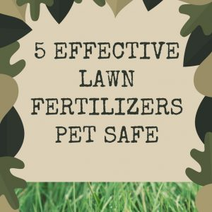 Lawn Fertilizer Pet Safe