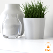Hive Home - Control your home from the palm of your hand